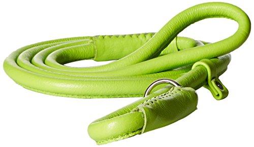 Dogline 3/8Zoll breit Weich Gepolstert gerollt rund Leder Hunde Retrieverleine/Kennel Leine, 53-inch, grün