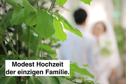 Modest Hochzeit der einzigen Familie.