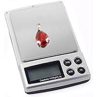 Xcellent Global Profesional 1000g x 0.1g Jewelry Mini Electronic Digital Peso del bolsillo del balance
