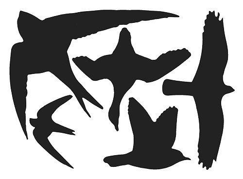 Vogelsilhouetten Fensterschutz Warnvögel 5 Aufkleber schwarz -