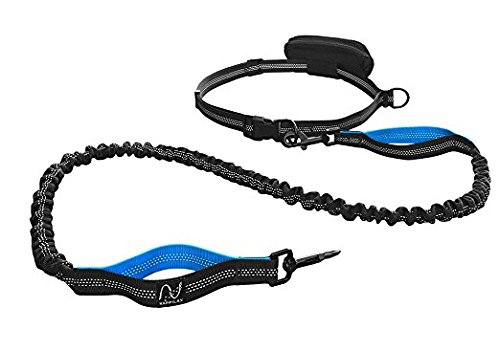 Joggingleine für Hunde mit extra hoher Spannkraft für Belastungen bis 100kg und dehnbar von 120 bis 220cm | stoßdämpfend und reflektierend | von Happilax