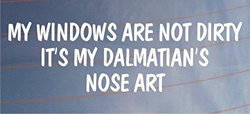 My Windows sind nicht schmutzig seine My Dalmatiner 's Nase Art Funny Auto/Van Hund Aufkleber