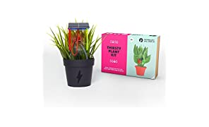 Tech Will Save Us DIY Thirsty Plant Kit | Educational STEM Toy, Ages 8 and Up