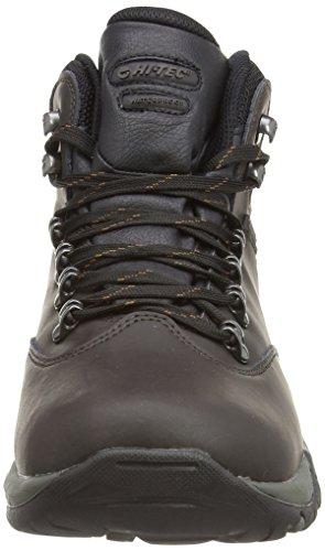 Hi-Tec Ottawa Ii, Chaussures de Randonnée Hautes Homme Marron (Dark Chocolate 041)
