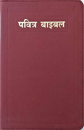 The Holy Bible Royal Golden Color GoldEdge ( HINDI)