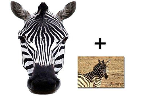 Zebra Tier Single Karte Partei Gesichtsmasken (Maske) Enthält 6X4 (15X10Cm) starfoto (Einfache Zebra Kostüm)