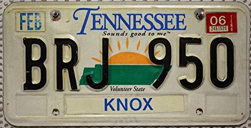 USA Nummernschild TENNESSEE ~ US Kennzeichen License Plate ~ Blechschild