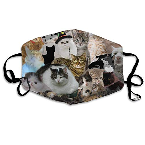 Fashion Outdoor Mouth Mask, Face Masks with Design, Reusable Mouth Face Masks Fashion Collage Cat Earloop Mask Washable Outdoor Anti-Dust Allergy Windproof Collage Fleece