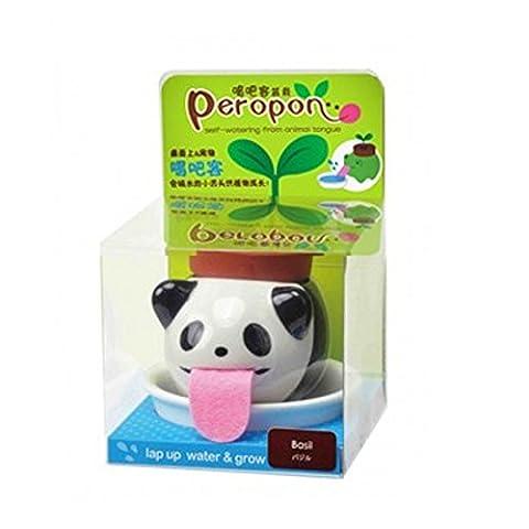 Lugii Cube mignon Pot de fleurs à réserve d'animal à boire Animal Langue Culture Mini pots de fleurs en céramique, Panda-Wild Strawberry