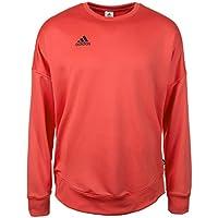 Adidas Tan Terry JSY Sudadera, Hombre, Rojo (Correa), L