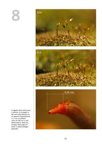 Guida alla Macrofotografia Naturalistica 2ª Edizione 2014