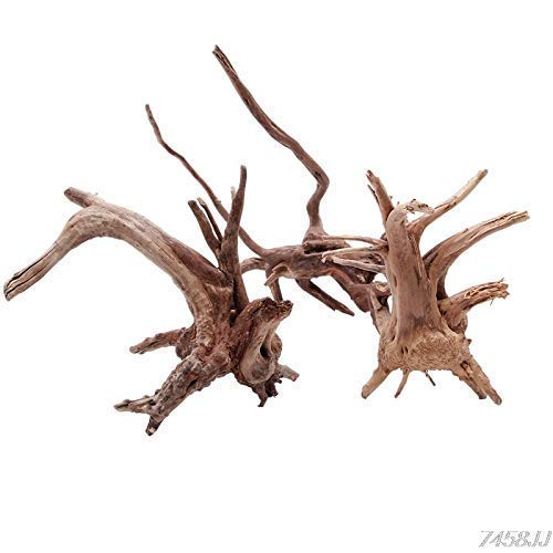 Petzlifeworld Aquarium Decorations Natural Branch Driftwood for Fish Tank Decoration 10-15CM (Random Shape)