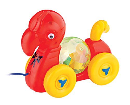 Toyzee Pull Along parrot Toy For Baby