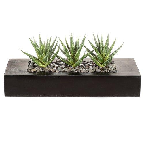 wohnfuehlidee Kunstpflanze Agave, Farbe grün, im Holzkasten, Höhe ca. 16 cm