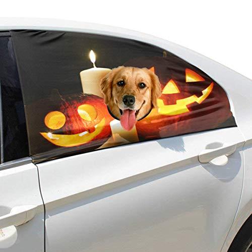 e Kürbis Kerze Faltbarer Hund Sicherheit Auto Gedruckt Fenster Zaun Vorhang Barrieren Protector Für Baby Kind Einstellbare Flexible Sonnenschutzabdeckung Universal Fit Für Suv ()