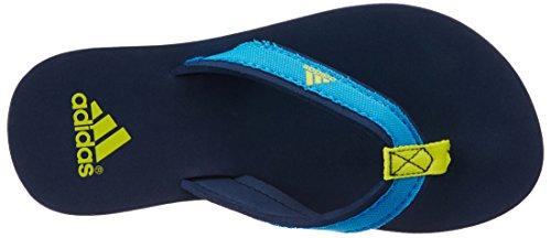 adidas Unisex Baby Beach Thong K Zehentrenner, Blau / Gelb (Maruni / Azusol / Amabri), 30 EU -