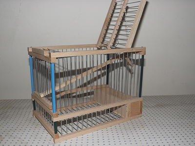 Gabbia cinciarella trappola per voliera canarini uccelli in legno