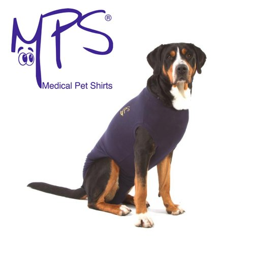 MPS Medical Pet Shirt, Blau, für mittelgroße + Hunde