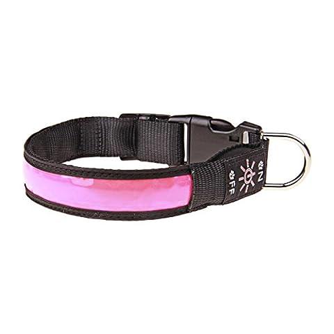 Kefan LED Collier de chien étanche rechargeable USB clignotant Collier Idéal pour Nuit Walk visible et sûr