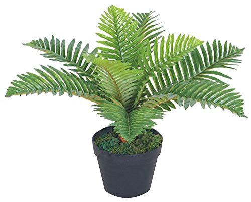 Decovego Palme Palmfarn Kunstpflanze Plastik Künstliche Pflanze 50cm