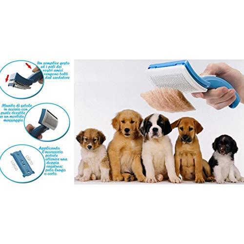 Zoom IMG-2 trade shop traesio petzoom spazzola