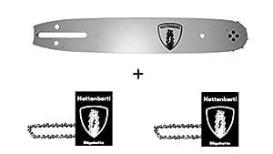 2 x Sägekette + 1x Kettenbertl Führungsschiene für Motorsäge ALPINA ELETTRA 160 40 cm Schwert (Schnittlänge) 3/8 1,3 mm