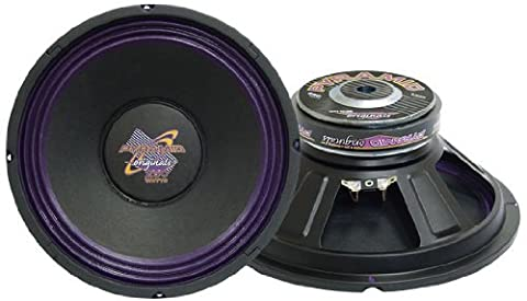 Pyramid WH1038 300 W 10-Inch 8 Ohm High Power Paper Cone Subwoofer