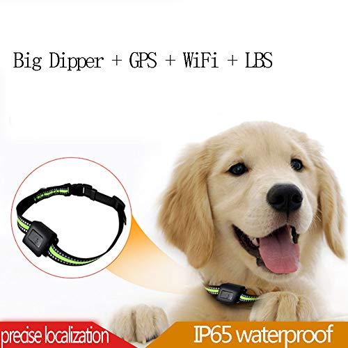 XDYFF Haustier GPS Tracker Echtzeit Halsband Tracker Locator Hund Katze GPS Tracker Realtime Training Collar Aktivitäten Unterstützung für mehrere Sprachen (Spanische Sprache Aktivitäten)