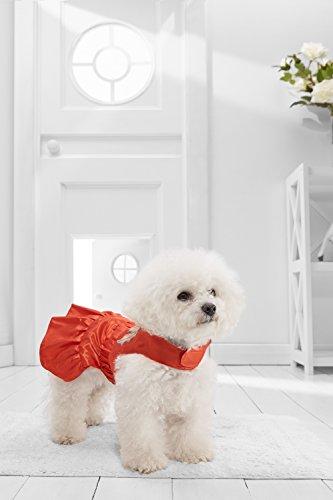 Nothing But Love Pets Kleine Hunde Cape Kleid für Bichon Frisé pekinses Shi TZU Mini Schnauzer Motiv: Frenchie, Small Size, Rot -