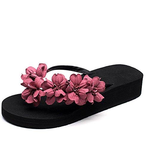Chaussons HAIZHEN Chaussures pour Femmes Pantoufles d'été Femme Sandales Chaussures de Plage décontractés (Rouge, Bleu, Vert, Violet) pour Femmes