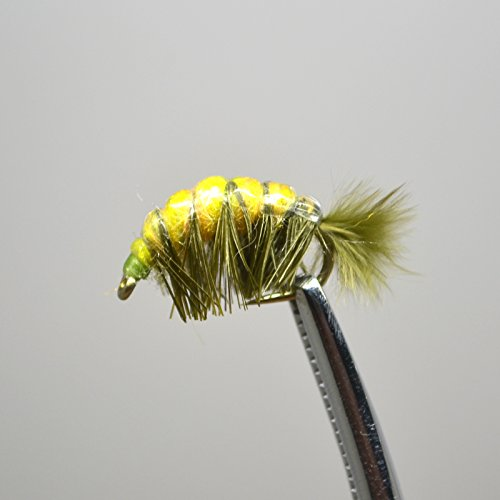 Forellen äschen Fly Angeln Wet Fliegen Hase Fell Tschechische Nymphe Olive Shrimp Set von 5
