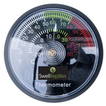 Swell-Reptiles-Dial-Thermometer