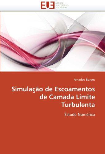 Simulação de escoamentos de camada limite turbulenta par Amadeu Borges