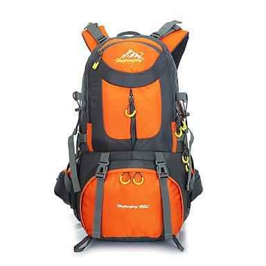 50 L Rucksack Camping & Wandern Klettern Legere Sport Jagd Reisen Radsport Schule Draußen Leistung Legere SportWasserdicht Regendicht Orange