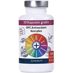 Antioxidant Komplex I OPC angereichert mit 11 wichtigen Antioxidantien und Superfood Extrakten I Für Zellschutz, Anti-Aging, Immunsystem I Ohne Zusatzstoffe I 120 vegane Kapseln