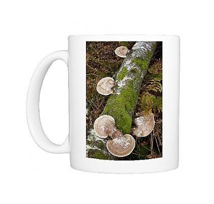 Photo Mug of Birch Polypore or Razorstrop Fungus - on birch log