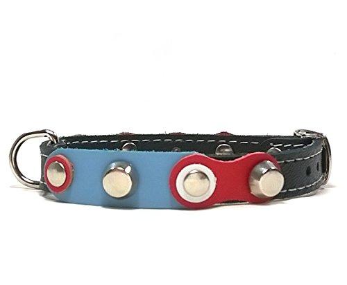 Leder Hundehalsband Design Kleine Hunde und Chihuahuas - Halsband Schwarz Lederhalsband - Ein Frisches Design mit Rot Weiß und Blauen Farben (Weiß Blau Halsband Rot)
