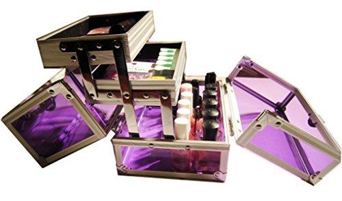 Violet professionnel Beauté cosmétiques et maquillage boîte de rangement transparent Voir à travers 3 Compartiment de rangement avec clé et serrure