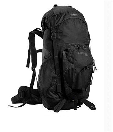 sac à dos randonnée sacs de montagne en plein air professionnels 40l sac à dos des hommes de l'épaule et les femmes sac à dos Voyage Sacs à dos de randonnée ( Couleur : Noir , taille : 40L )