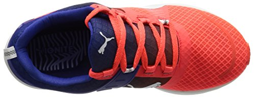 Puma Ignite Xt V2 Wns, Scarpe da Corsa Donna Rosso (Rot (Red blast-puma White-Royal Blue 01))