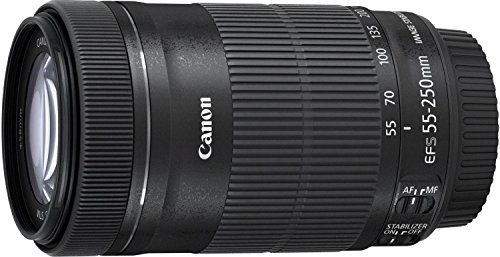 canon-ef-s-55-250-mm-f-4-56-is-stm-lens