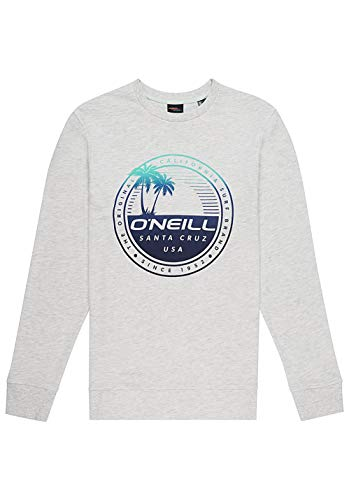 ONEILL LM Palm Island Camiseta Hombre
