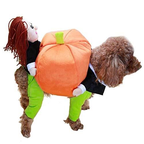 Hete-supply Funny Pet Kostüm Kleidung, Pet Tragetasche Kürbis Kostüm Hund Katze Haustiere Anzug Weihnachten Halloween Kleid bis Dekoration Prop Geschenk für Katze Hund Puppy (Bichon Halloween Kostüme)