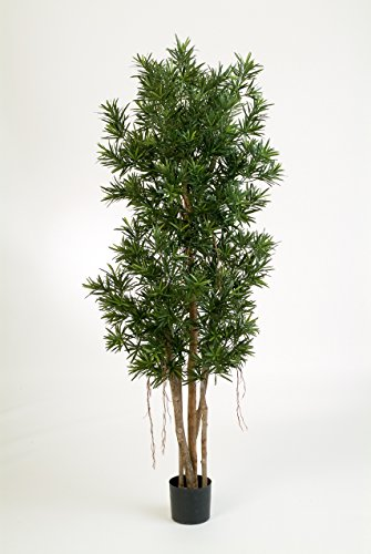 Kunst-Podocarpus MATEO, 8526 Blätter, grün, 210 cm – Kunstpflanze / Baum im Topf – artplants
