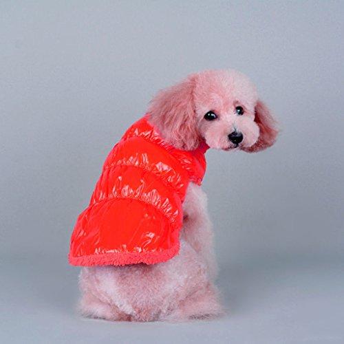 PETSOLA Warme Winter Haustier Hund Kleine Welpen Kleidung Gepolsterte Weste Fleece Jacke Mantel Kostüm - Transparent Red, S