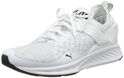 Puma Ignite Evoknit Lo, Chaussures de Running Compétition Homme Blanc (Puma White-vaporous Gray-puma Black 02)