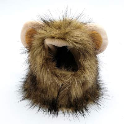 (ZMMAperücke Katze Hund Hut perücke Haar hat die kleine Prinzessin zöpfe lustig perücke Kopfschmuck,löwe hat Winter - Stil,xs)