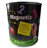 Magnetix Pittura Magnetica da 500 ml