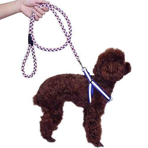 Hundeleine Leine Walking Soft Griffe Verstellbarer Gürtel Komfortable Sicherheit Kragen Reflektierende Ropewith Pet Leine (Size : M)