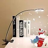 LED Klemmleuchte Bett Leselampe Kleine Schreibtischlampe Klemmlampe Clip Tischlampe 6W Silber mit 2 Lichtfarben: Kaltweiß und Warmweiß (Ohne Adapter)
